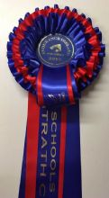 Three Tier Rosettes - Red & Blue
